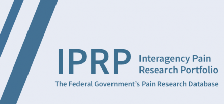 Interagency Pain Research Portfolio The Federal Government's Pain Research Database logo
